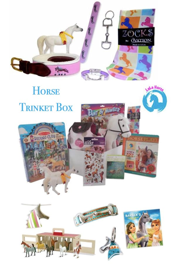 LaLa Horse Monthly Goody Box